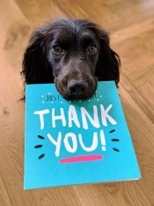 Perro con tarjeta de agradecimiento
