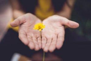 compasión mindfulness
